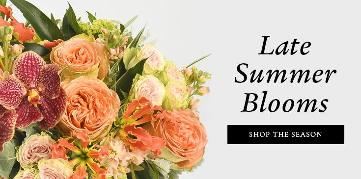Flower delivery philadelphia same day florist robertsons flowers mightylinksfo