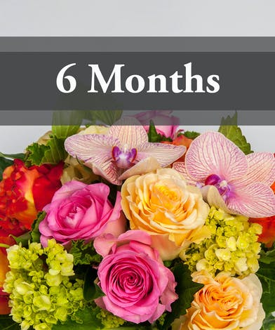Flowers by the Month - 6 Months
