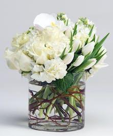 White Arrangement Philadelphia (PA) Robertson's Flowers
