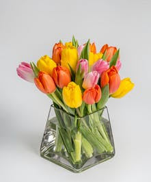 pink, orange, and yellow tulips