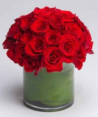 Red Rose Arrangement Philadelphia, PA