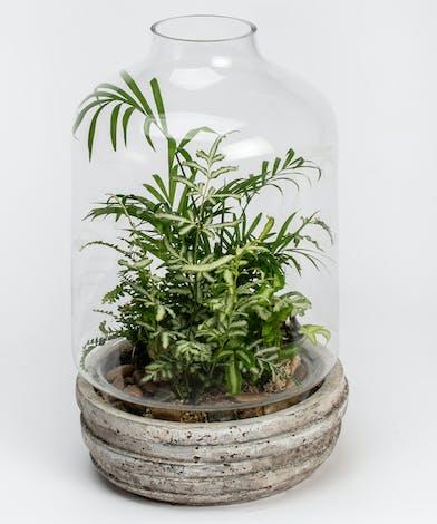 Mini Terrarium Planter