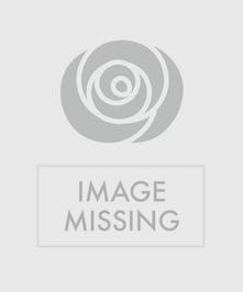 blush and burgundy dahlia arrangement in a bronze bowl