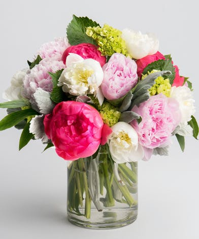 coral, pink and white peony in a glass cylinder vase