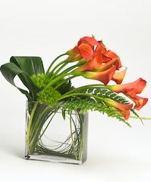contemporary design of mango calla lilies in a rectangular glass vase
