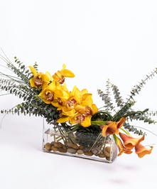 asymmetrical design of golden cymbidium orchids and mango calla lilies in a rectangular glass vase