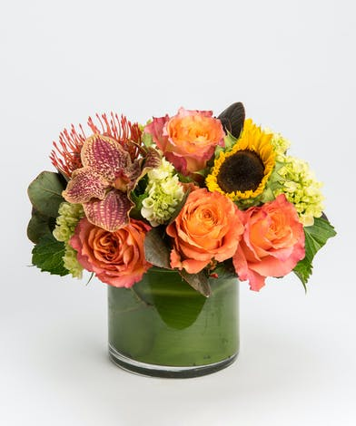 orange roses, sunflowers and bronze orchids in cylinder vase