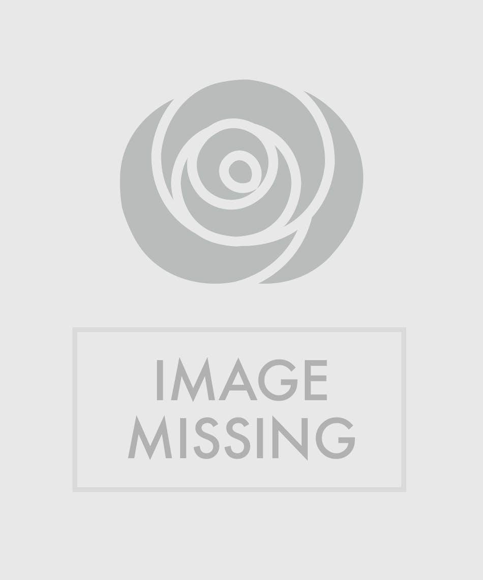 Mini Orchid Terrarium Planter
