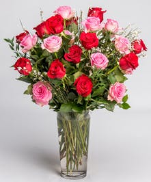 Classic Long Stem Pink and Red Roses