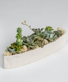 Succulent Garden in oblong ceramic