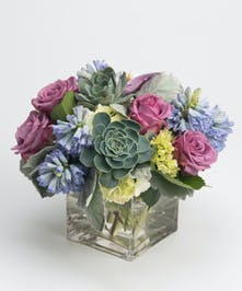 lavender roses, blue hyacinth and succulents arrangement