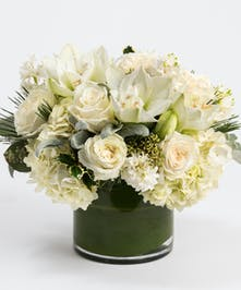 all white roses and amaryllis in cylinder vase