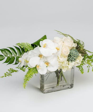 A serene collection of unique white and green flowers come together in this modern, elegant arrangement.