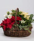 Seasonal English Garden Basket