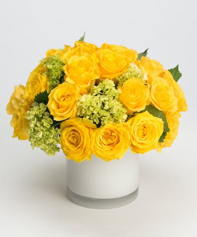 all yellow roses with mini green hydrangea