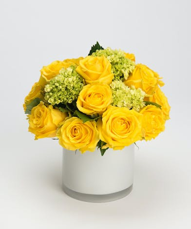 all yellow roses with mini green hydrangea in a white glass vase