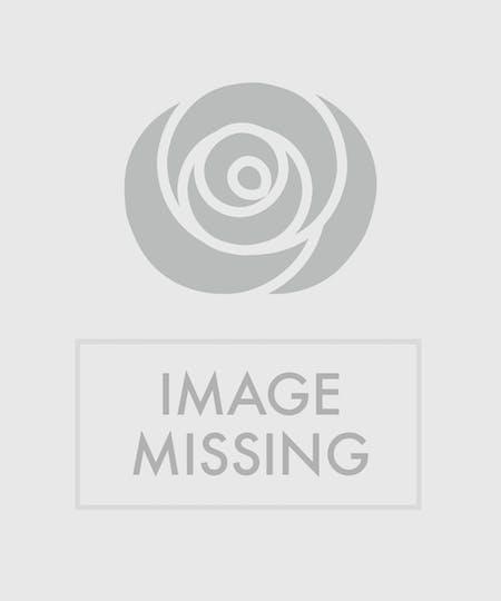 Philadelphia Flowers