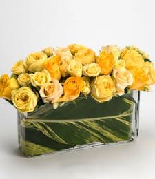 Generosity Blossoms: Premium