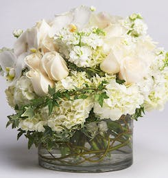 Dozens of white roses in a cylindrical vase